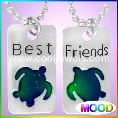 Mood Turtle Best Friends Necklace