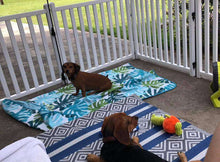 Load image into Gallery viewer, Picket Play Fence System For Pets By SafetyStep (01-2314)