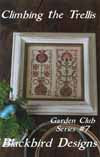 Climbing the Trellis | Garden Club Series #7 | Cross Stitch | Blackbird Designs