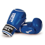 Lion Circle Target Boxing Gloves