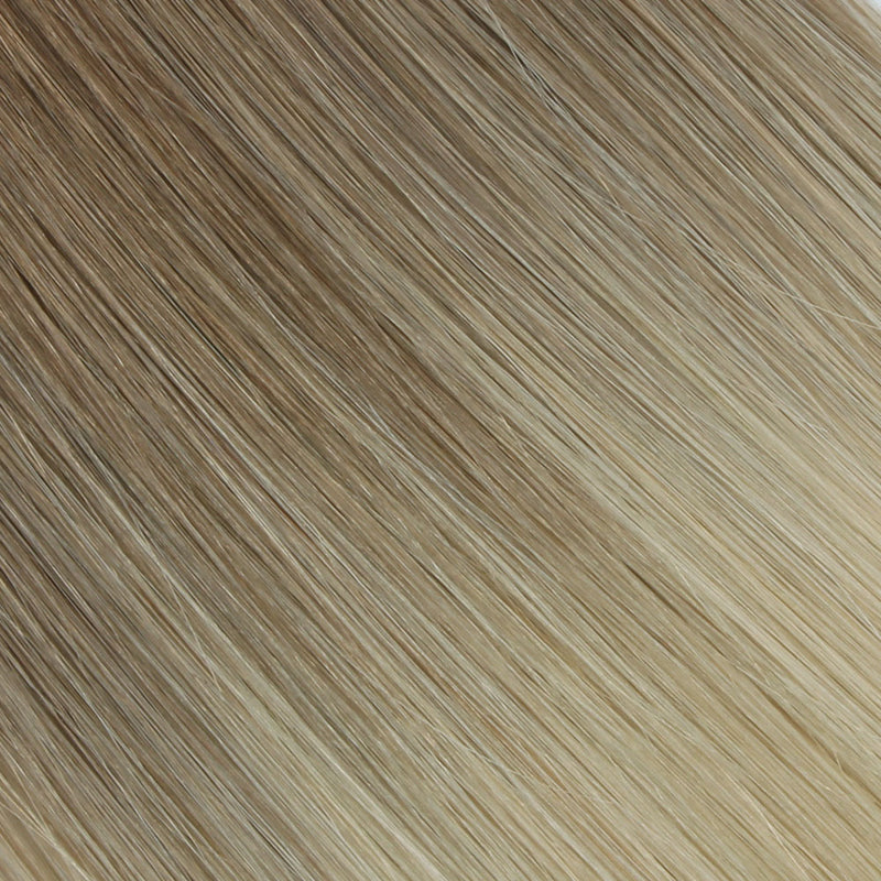ombre brown/ash blonde #6/60