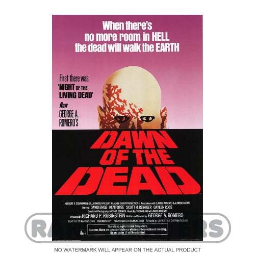 Dawn of the Dead Framed Movie Poster