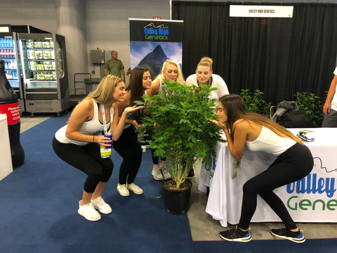 People Taking Photos With VHG Plants