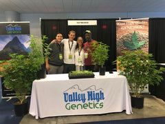 Valley High Genetics Team I USA CBD Expo