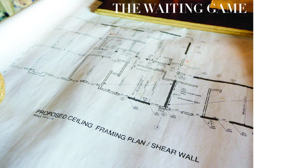 The Waiting Game- Approvals, Permits, Inspections, & Demo