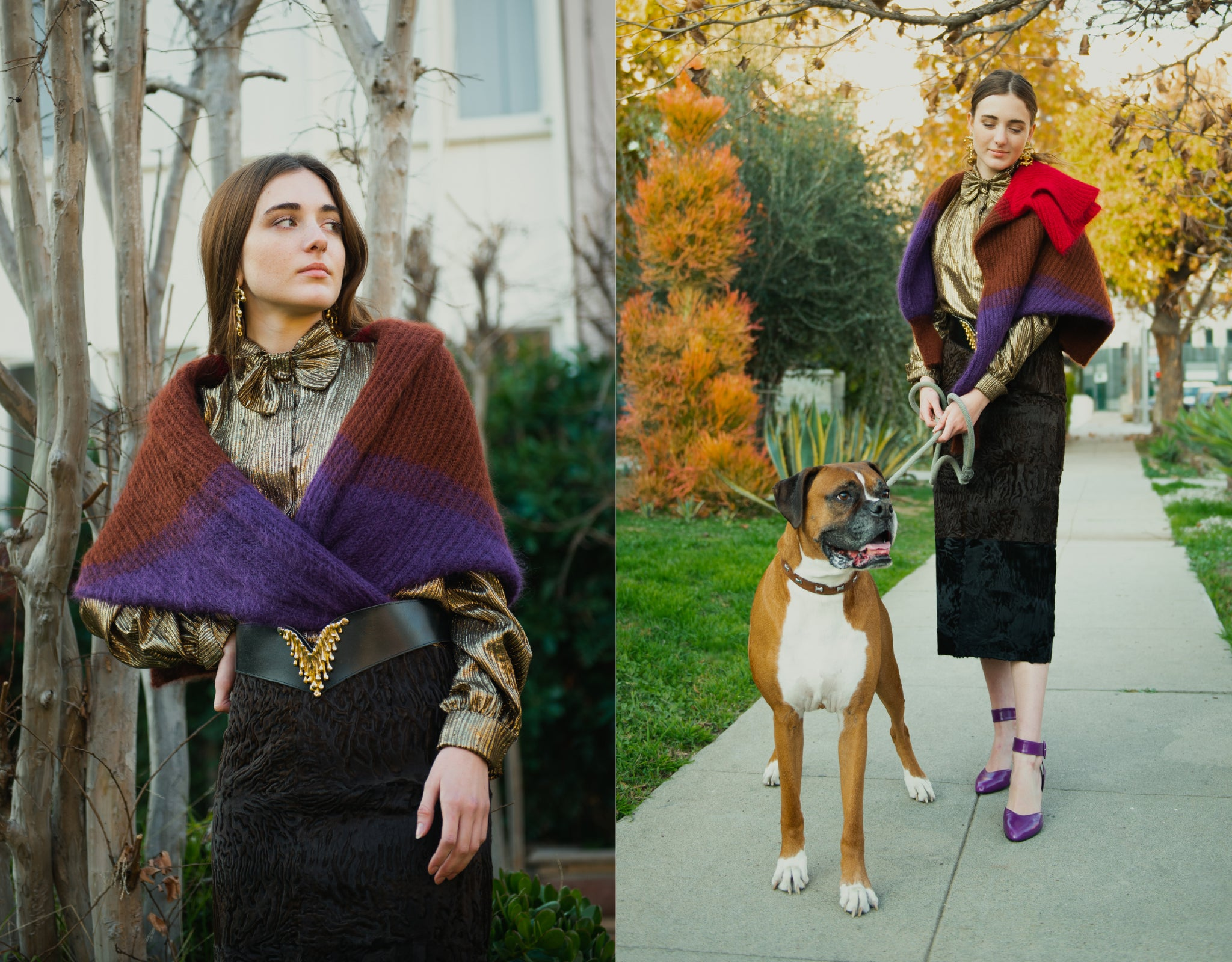 Girl in gold Jacques Molko blouse and Fendi Persian Lamb Skirt by tree with boxer dog