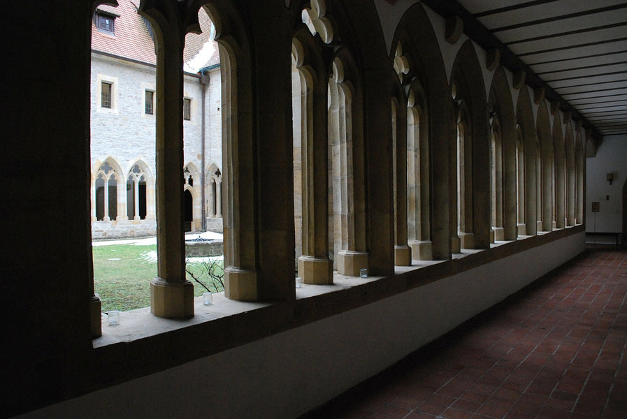 Luther: The Rest of the Story, Part I: The Road to the Monastery