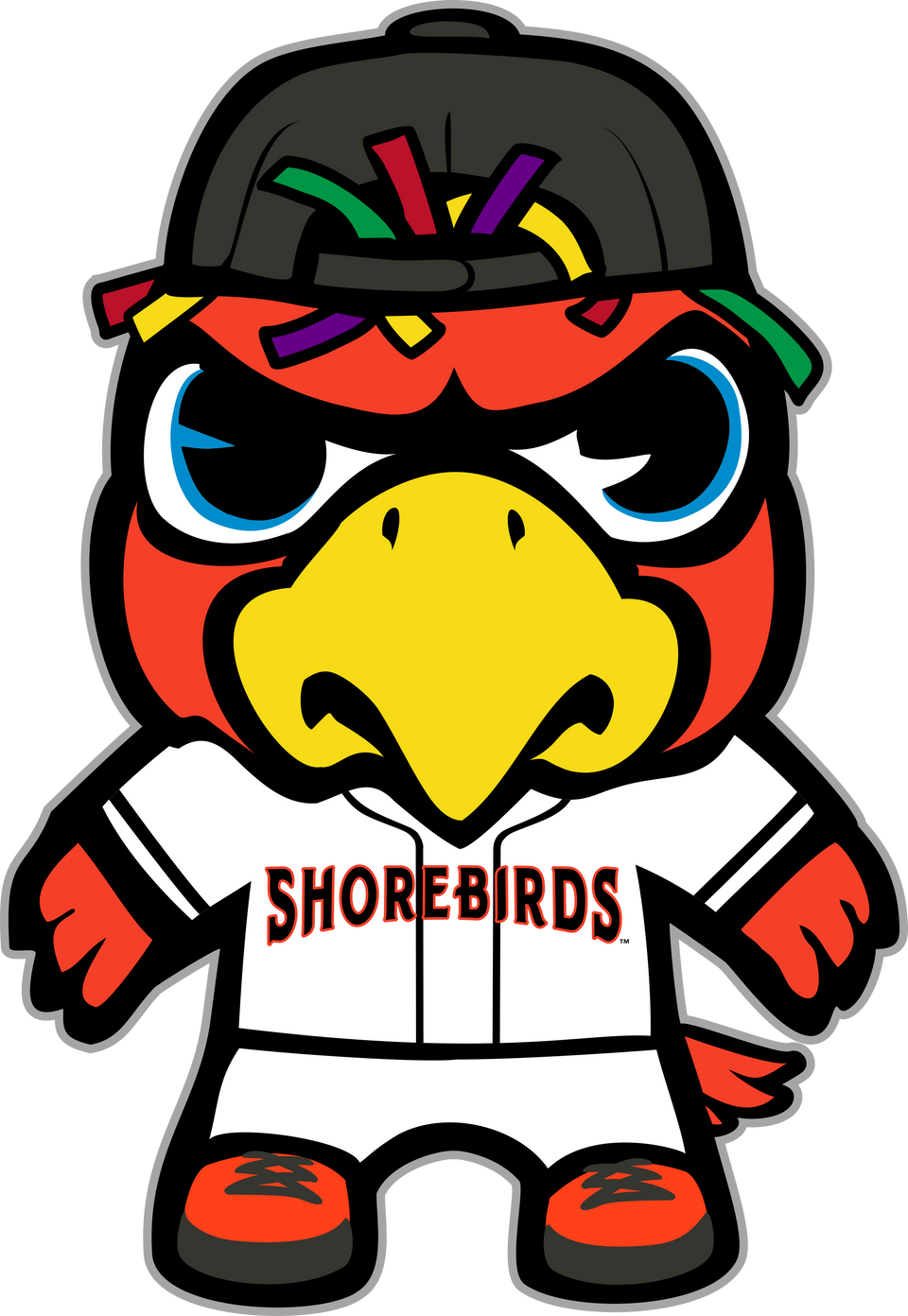 collections/Delmarva_Shorebirds.png