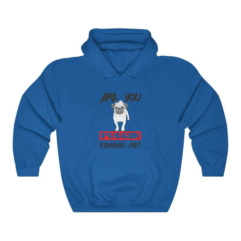 Are You Puggin' Kidding Me  Hoodie