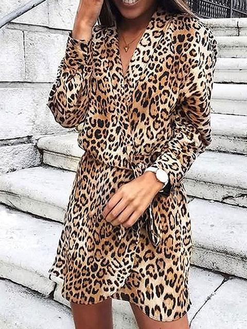 Leopard Print V-neck Long Sleeve Mini Dress