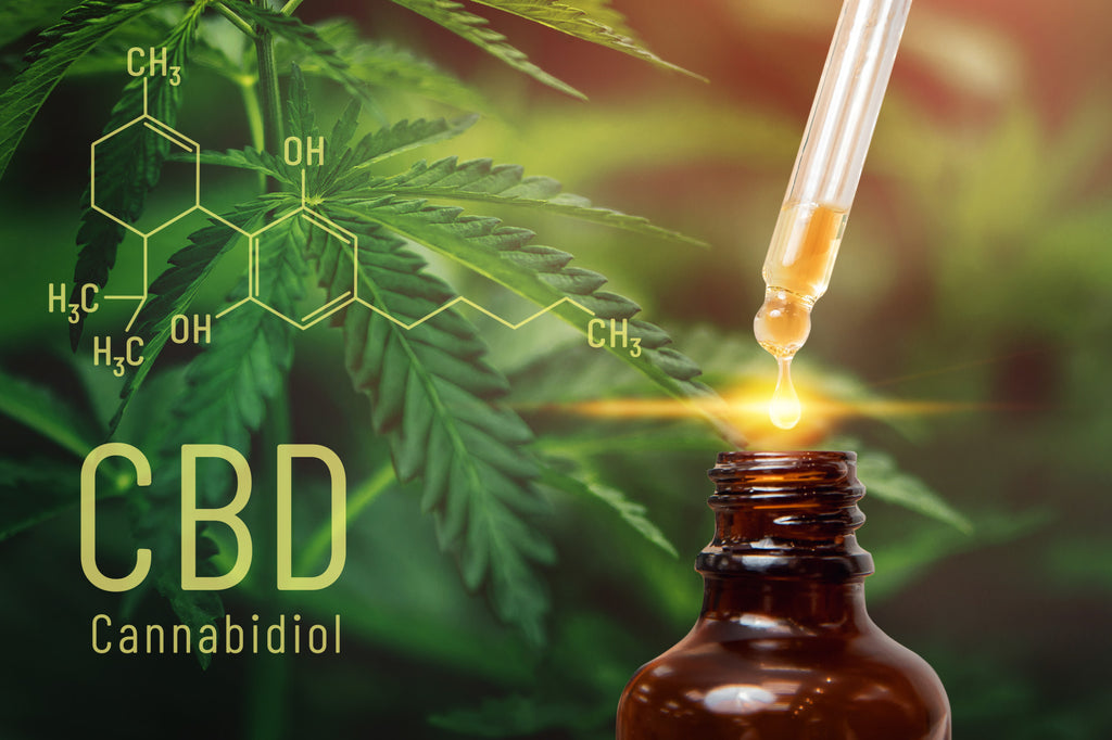 CBD vs. Xanax: Could the Holy Herb Be a Better Alternative to Managing Stress?