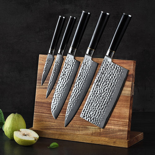 Kaori Hezhen Damascus Steel Knife Set with Magnetic Block