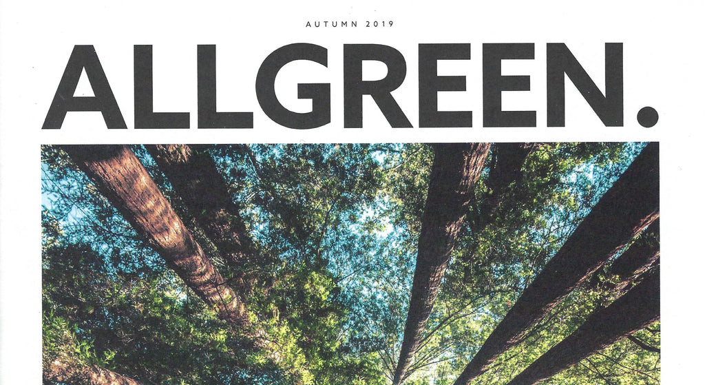 ALL BRIGHT'S ALL GREEN: SCENTS & SUSTAINABILITY