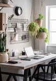 Home office with greenery