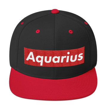 Zodiac Sign Hype Snapback Hat - House of the Twelve