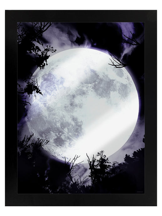 Framed Mirrored Tin Sign - Celestial Moon