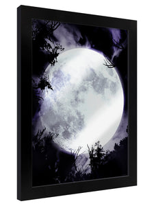 Framed Mirrored Tin Sign - Celestial Moon - Kate's Clothing