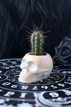 Load image into Gallery viewer, Killstar White Skull Planter - Kate's Clothing