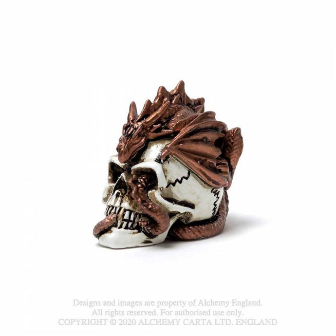 Alchemy Gothic Dragon Keepers Skull: Miniature Ornaments - Kate's Clothing