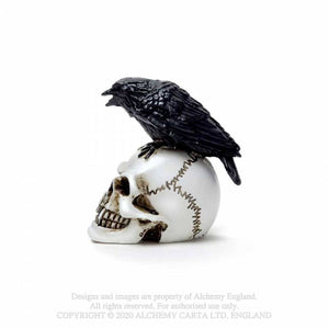 Alchemy Gothic Raven Skull: Miniature Ornaments - Kate's Clothing