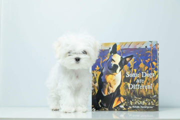 Some Dogs are Different Book Book
