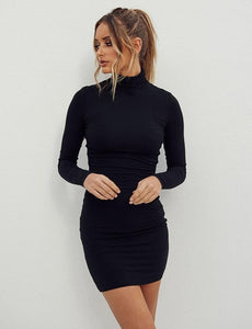 Black Turtleneck Slim Dress