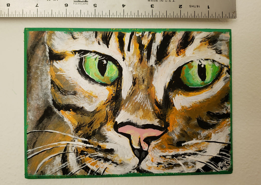 orange striped cat with green eyes