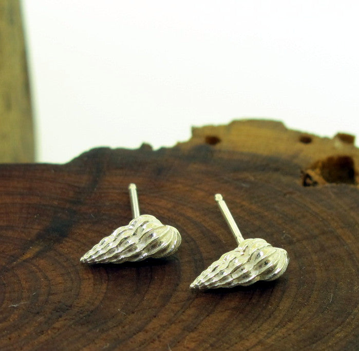 Pointy Sea Shell Studs
