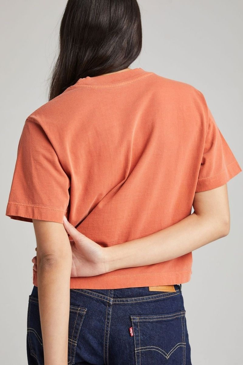 Redwood Relaxed Crop Tee