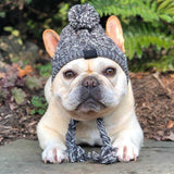 Dog Winter Windproof Hat
