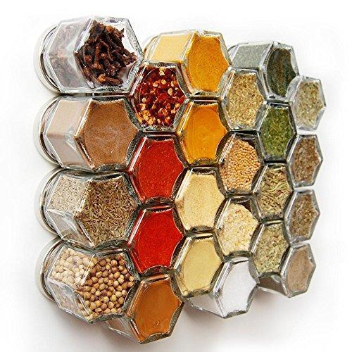 Best Gneiss Spice Everything Spice Kit: 24 Magnetic Jars Filled with Standard Organic Spices/Hanging Magnetic Spice Rack (Small Jars, Silver Lids)
