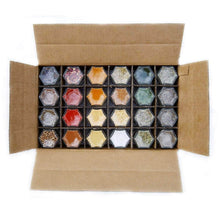 Load image into Gallery viewer, Best Gneiss Spice Everything Spice Kit: 24 Magnetic Jars Filled with Standard Organic Spices/Hanging Magnetic Spice Rack (Small Jars, Silver Lids)