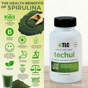 Techui (Natural Weight Gain)