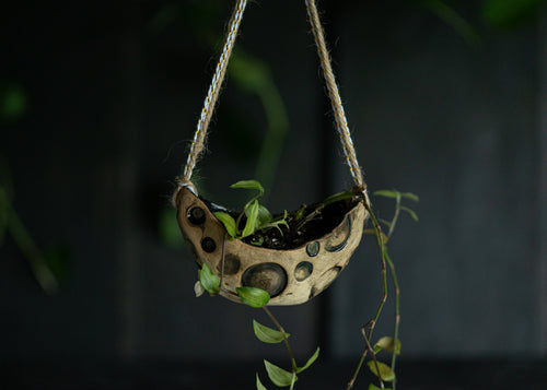 Crescent Moon hanging planter