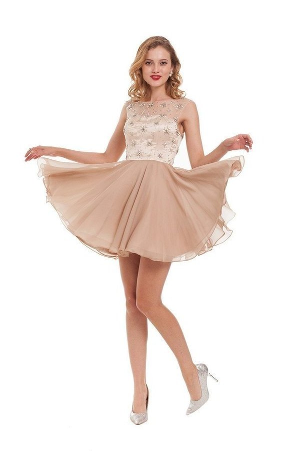 2020 A Line Homecoming Dresses Scoop Chiffon With PT1A7977