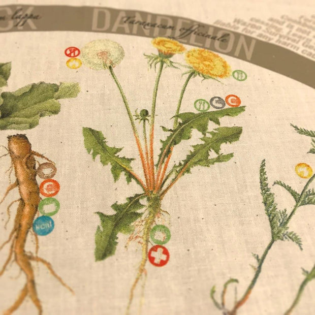 Dandelion medicinal and edible plant detail on bandana