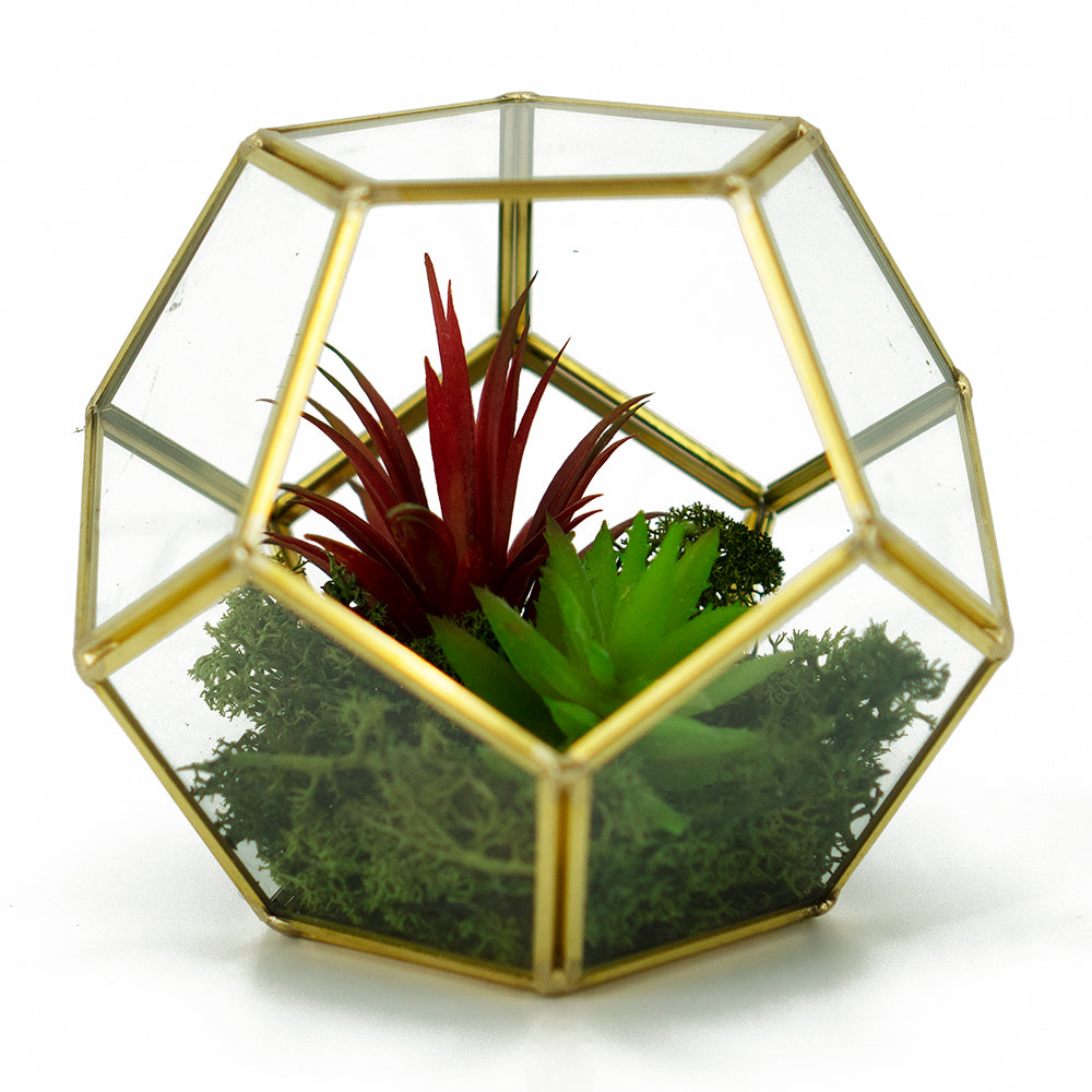 Geometric Pentagon Artificial Arrangement Terrarium Vase (14.5cm)