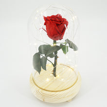 Load image into Gallery viewer, Real Preserved Forever Enchanted Red Rose