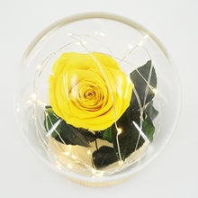 Load image into Gallery viewer, Real Preserved Forever Enchanted Yellow Rose