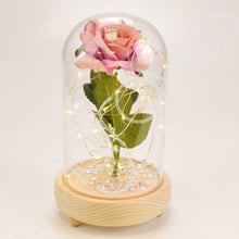 Load image into Gallery viewer, Antique Pink Handmade Enchanted Rose in Glass Dome Bell Jar with LED Lights - Angraves Memorials