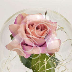 Antique Pink Handmade Enchanted Rose in Glass Dome Bell Jar with LED Lights - Angraves Memorials