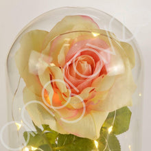 Load image into Gallery viewer, Magical Dusty Pink Handmade Enchanted Rose in Glass Dome Bell Jar with LED Light - Angraves Memorials
