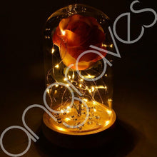 Load image into Gallery viewer, Apricot Orange Handmade Enchanted Rose in Glass Dome Bell Jar with LED Lights - Angraves Memorials