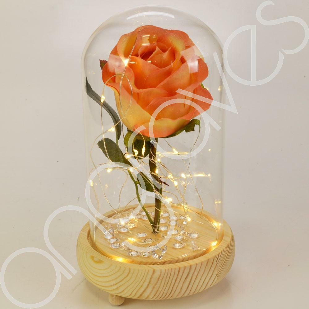 Apricot Orange Handmade Enchanted Rose in Glass Dome Bell Jar with LED Lights - Angraves Memorials