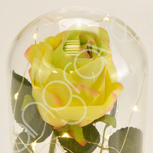 Mixed Lemon & Lime Handmade Enchanted Rose in Glass Dome Bell Jar with LED Light - Angraves Memorials