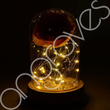 Load image into Gallery viewer, Blush Pink Handmade Enchanted Rose in Glass Dome Bell Jar with LED Lights - Angraves Memorials