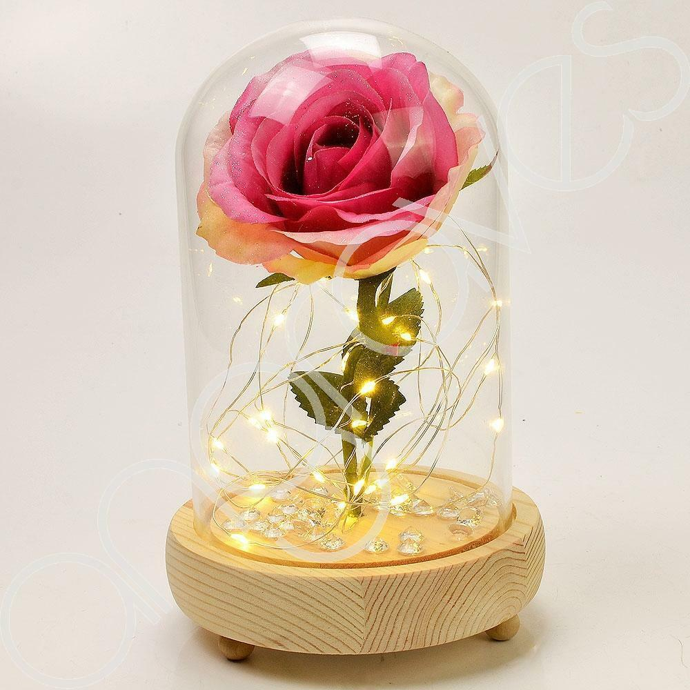 Blush Pink Handmade Enchanted Rose in Glass Dome Bell Jar with LED Lights - Angraves Memorials