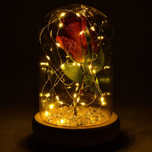 Load image into Gallery viewer, Glistening Cerise Handmade Enchanted Rose in Glass Dome Bell Jar with LED Lights - Angraves Memorials