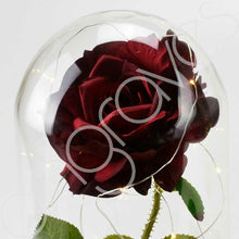 Load image into Gallery viewer, Extra Large Handmade Fairy Tale Enchanted Red Rose in Glass Dome Bell Jar Cloche with Magical Glow Lights (Perfect for Wedding Displays) - Angraves Memorials