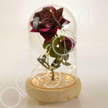 Load image into Gallery viewer, Bella Pink Handmade Enchanted Rose & Rosebud with Glass Dome Bell Jar and LED Lights (23cm) - Angraves Memorials
